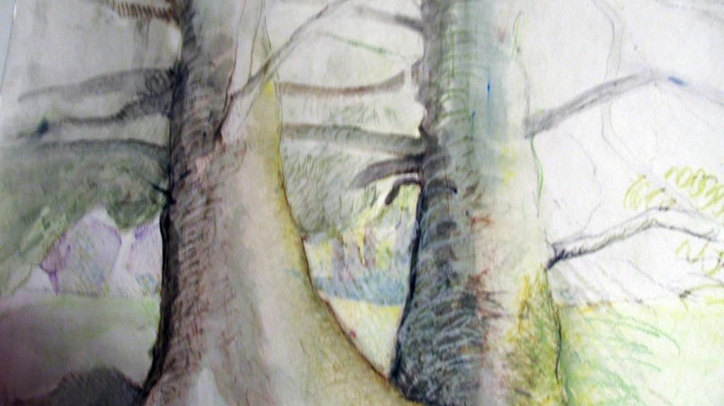 Trees_Maria